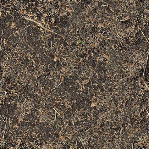 forest floor texture forest floor terrain 0030 texturemax