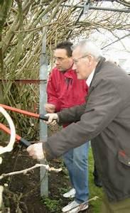 Tailler Les Kiwis : le t l gramme pont scorff horticulture c 39 est le dernier moment pour tailler les kiwis ~ Farleysfitness.com Idées de Décoration
