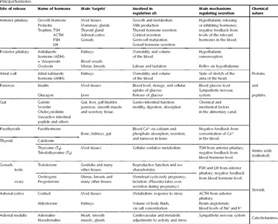 Endocrine System Hormones and Functions Chart