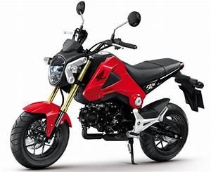 Petite Moto Honda : honda msx 125 les photos officielles ~ Mglfilm.com Idées de Décoration