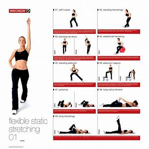 Female Static Stretching Chart | Training, Health and ...