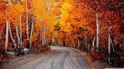 Autumn California 4k Desktop Background Widescreen Wallpapers