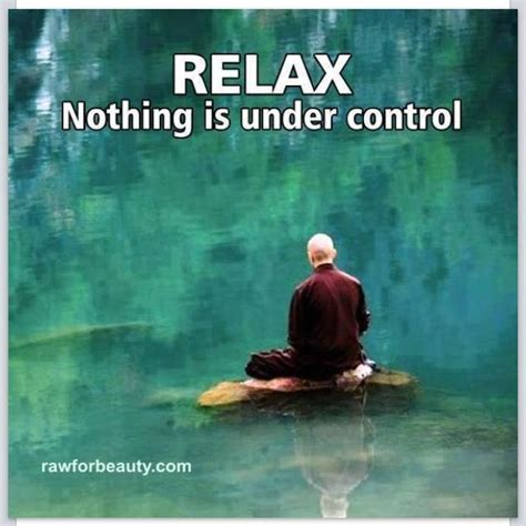 Relax Meme - relax nothing is under control funny pinterest affirmations calm down and everything