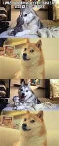 Husky Dog Jokes on Pinterest | Pun Husky, Pun Dog and Husky