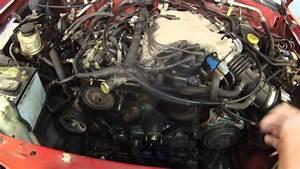 2000 Nissan Xterra 3 3 Timing Belt  No Damage