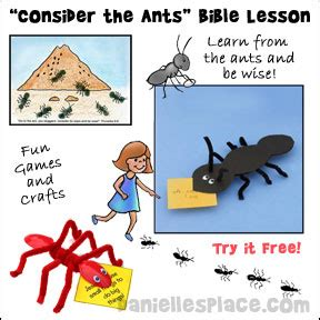 free and sample sunday school lessons and children s sermons 604 | consider the ants free sunday school lesson