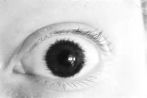 Human Eye Color Chart