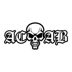 drogen sprüche aufkleber acab skull