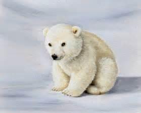 Baby Polar Bear Drawings