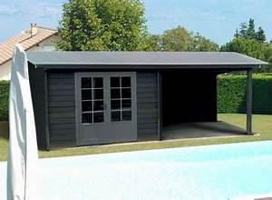 Lame Bois Pour Construction Chalet : abri jardin moderne design lame composite avec terasse promo ~ Melissatoandfro.com Idées de Décoration