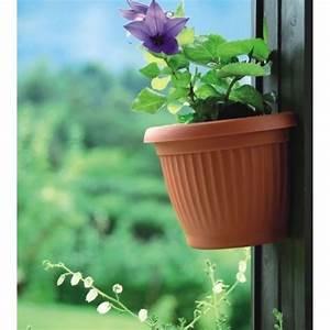 Blumentopf Zum Aufhängen : prosperplast terra blumentopf halbrund zum aufh ngen 2 8 l ~ Michelbontemps.com Haus und Dekorationen