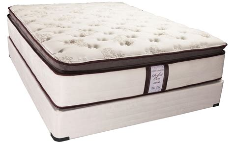 american mattress company featured friday care 5000 mattress american freight