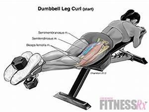 Lying Dumbbell Leg Curls - Firm Your Rear Thighs   Fitspo ...