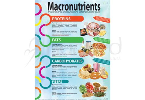 3d home planner macronutrients poster nutrition in posters