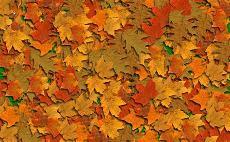 Fall Backgrounds by Backgrounds Fall Wallpaper Cave