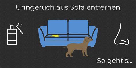 Statische Aufladung Sofa by Uringeruch Aus Sofa Entfernen So Wird Deine