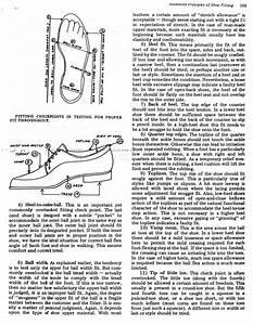 A Professional U2019s Shoe Fitting Guide