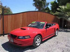 2002 Ford Mustang Deluxe Convertible 2D - The Auto Locators