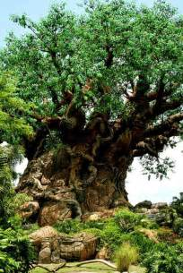 Disney World Animal Kingdom Tree