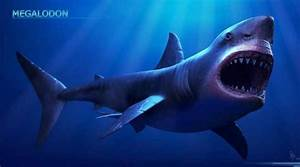 Megalodon shark became extinct 2.6 million years ago, UF ...