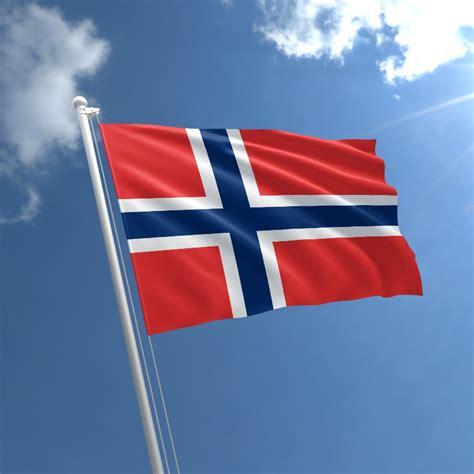 Image result for norwegian flag