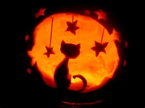 cat pumpkin ideas 28 best cool scary halloween pumpkin carving ideas designs images 2015