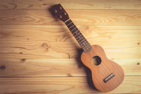 Berikut ini contoh alat musik ritmis yang dilengkapi dengan gambar dan penjelasannya. Alat Musik Yang Menggunakan Senar Dawai Sebagai Sumber Bunyinya Disebut - Coba Sebutkan