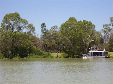 Houseboat On The Murray by A Houseboat On The Murray At Berri Picture Of Berri