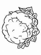 Cauliflower Coloring Pages Lettuce Vegetables Drawing Printable Recommended Adults Getcolorings Colors Getdrawings Pag sketch template