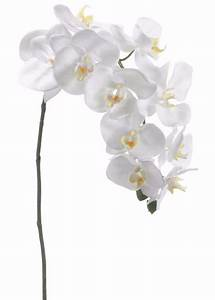 White Phalaenopsis Orchid Spray Silk Wedding Flowers