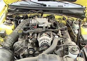 Zinc Yellow 2000 Ford Mustang Gt Spring Feature