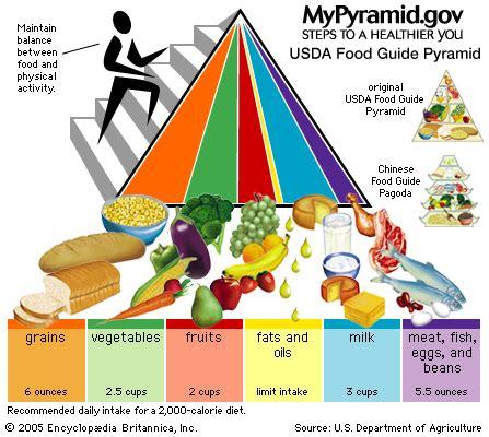 food guide pyramid diet britannica 854 | 82105 004 3C485EB5