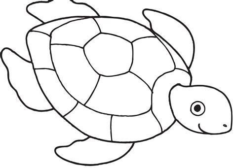 29 Coloring Pages Of Turtle Print Color Craft