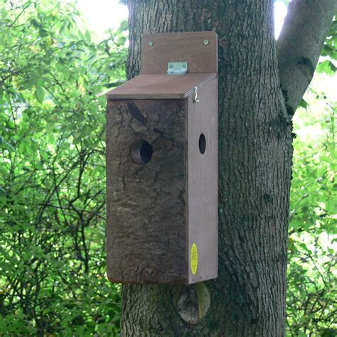 red squirrel nest box elite ecology uk ecological