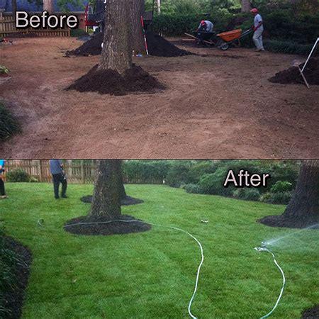 ready lawn cost plant fescue sod raleigh cary durham fuquay varina nc sod mulch
