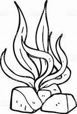 Seaweed Clipart Cartoon Algas Clip Colorare Alghe Drawings Branco Preto Desenho Immagini Fumetto Nero Bianco Drawing Template Disegni Fish Risultati sketch template