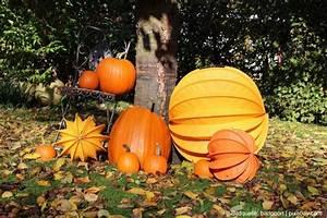 Garten Im Oktober : gartentipps f r den herbst tipps tests f r den garten ~ Lizthompson.info Haus und Dekorationen