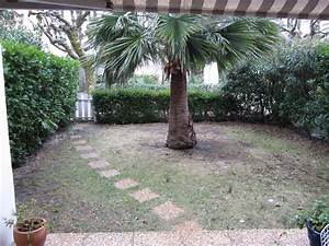 creer un petit jardin fashion designs With attractive amenagement petit jardin mediterraneen 3 creer un jardin de ville