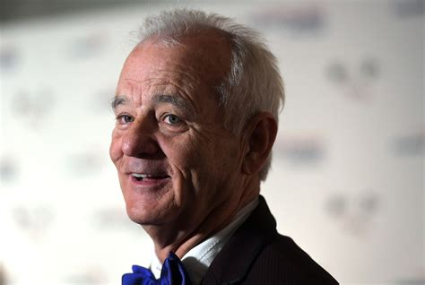 bill murray wallpapers  backgrounds