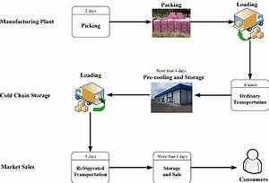 Process Of Table Grapes U0026 39  Cold Chain Logistics