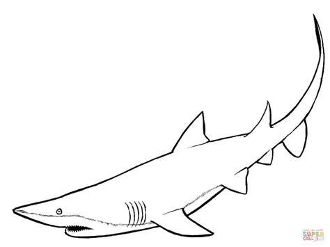 Kleurplaat Walvishaai by Shark Coloring Page Free Printable Coloring Pages