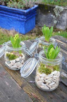 planter des jacinthes en pot 1000 id 233 es sur le th 232 me pots d ext 233 rieur de no 235 l sur planteurs de no 235 l no 235 l 224 l