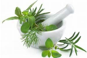 Homeopathy - Radiant Natural Health Homeopathy