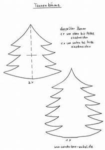 Tannenbaum Basteln Papier Vorlage : tannen und laubbaum pflanzen basteln meine enkel und ich ~ Orissabook.com Haus und Dekorationen