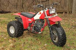 1984 Honda Atc 200x Pictures To Pin On Pinterest