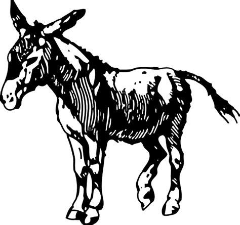 donkey clip art  vector  open office drawing svg svg vector illustration graphic art