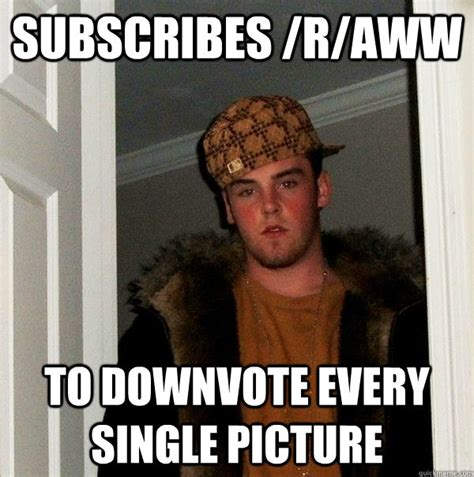 Aww Memes - subscribes r aww to downvote every single picture scumbag steve quickmeme