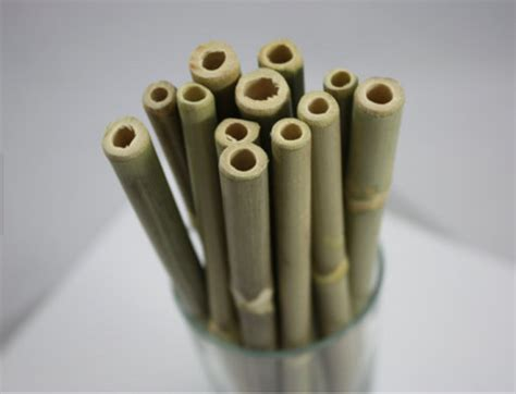 hate plastic waste   clever straw alternatives