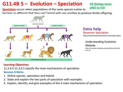 Evolution Speciation Online Presentation