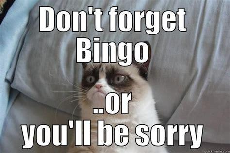 Bingo Memes - 25 best images about fun bingo on pinterest getting to know bingo and feelings